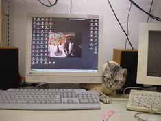 200501_68