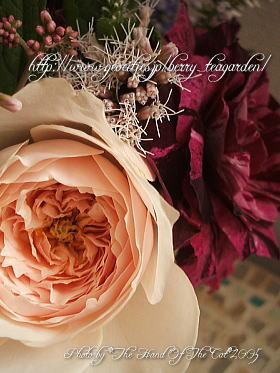 rose0509-3