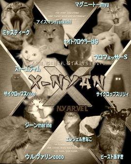 Xnyan6